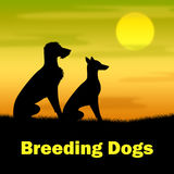 Breeding Dogs Shows Reproducing Doggy And Canines. Breeding Dogs Indicating Bred Breeds And Reproducing royalty free illustration
