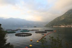 Breeding of fish and shellfish in the Bay of Kotor. Royalty Free Stock Photography