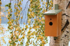 Breeding place. Wooden breeding place for birds in a birch tree Royalty Free Stock Photos