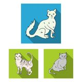 Breeds of cats flat icons in set collection for design. Pet cat vector symbol stock web illustration. Breeds of cats flat icons in set collection for design Stock Images