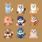 Breeds of Cats Icons. Vector Illustration Royalty Free Stock Images