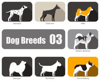 Breeds of dog standing side, vector Royalty Free Stock Images