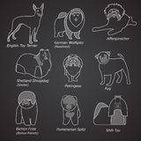 Breeds of dogs in linear style Royalty Free Stock Photo