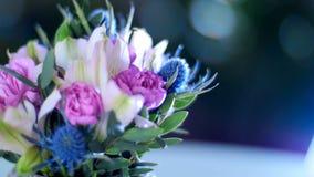 Breekbaarheid van goddelijke bloemenschoonheid stock videobeelden