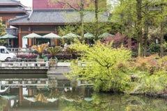 Breeze-ruffled Lotus at Quyuan Garden Stock Photography