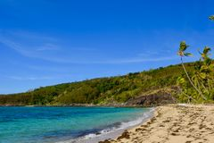 Breezy morning on secluded tropical island beach. In the South Pacific Ocean royalty free stock photography