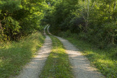 Breezy Road In Woods Royalty Free Stock Photography