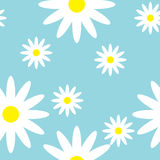 Breezy seamless pattern with daisies. Blossom of camomile on light blue background can be used for design of textile, print, wrapping paper or computer Stock Images