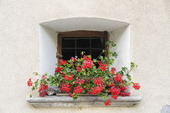 Bregaglia Graubunden, Switzerland: old village. Breagaglia Grigioni, Graubunden, Switzerland: historic village on the road to Maloja. Window with red flowers Royalty Free Stock Photos