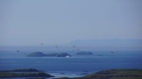 Breidafjördur Islands and ferry. Breidafjördur Islands and boat near Stykkisholmur stock photo