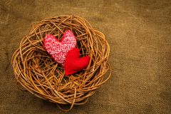 Breiende harten in het nest Royalty-vrije Stock Fotografie