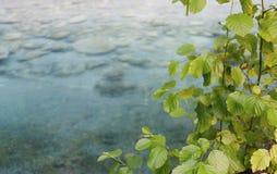 Breil-sur-Roya, Alpes-Maritimes,法国 免版税库存照片