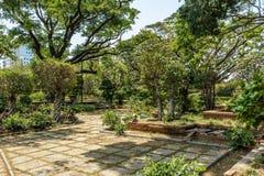 Breite Ansicht des grünen Gartens mit Gras, Bäumen, Anlagen, Schatten und Bahn, Chennai, Tamil Nadu, Indien, am 29. Januar 2017 Stockbilder
