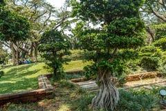 Breite Ansicht des grünen Gartens mit Gras, Bäumen, Anlagen, Schatten und Bahn, Chennai, Tamil Nadu, Indien, am 29. Januar 2017 Lizenzfreie Stockfotografie