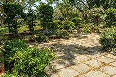 Breite Ansicht des grünen Gartens mit Gras, Bäumen, Anlagen, Schatten und Bahn, Chennai, Tamil Nadu, Indien, am 29. Januar 2017 Stockfotos
