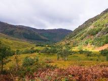 Breite Ansicht in Glen Nevis in den Hochländern von Schottland lizenzfreie stockfotos
