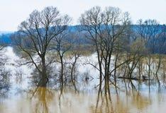 Breite Flut von kleinem Fluss Lizenzfreie Stockfotografie
