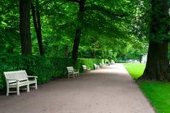 Breite Gasse mit weißen Bänke in grünem Sommer Lazienki-Park stockfoto