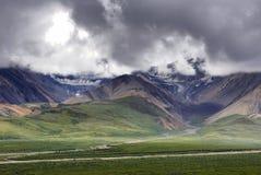 Breite Landschaft mit zwei Gletschern bei Denali Lizenzfreie Stockfotos