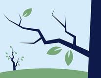 Breiten Sie sich mit Blättern aus Stockfotografie