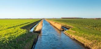 Breiter Abzugsgraben in einer landwirtschaftlichen Landschaft Lizenzfreies Stockfoto