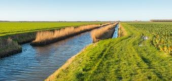 Breiter Abzugsgraben in einer landwirtschaftlichen Landschaft Lizenzfreie Stockbilder