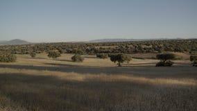 Breiter Schuss einer beträchtlichen und trockenen Landschaft stock video
