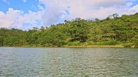 Breiter See-hohe Forstwirtschafts-Bank-Wasser-Kräuselung im Park stock video