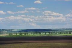 Breites Feld mit entfernten Bäumen und blauer Himmel mit weißen Wolken Lizenzfreie Stockfotos