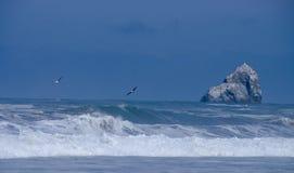 Brekende golven, grote rots, zeemeeuwen op de kust van Oregon Royalty-vrije Stock Afbeeldingen