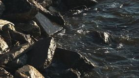 Brekende golven op rotsen stock footage