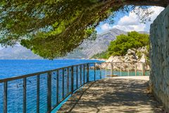 Brela, Croatia with adriatic sea and shadow of pines in summer. Dalmatia, Makarska Riviera. Brela, Croatia with adriatic sea and shadow of pines in summer royalty free stock photo
