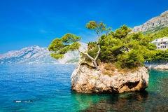 Brela Rock. Beautiful famous Brela Rock near Punta Rata beach, Makarska Riviera, Croatia Royalty Free Stock Images