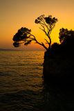 Brela Rock silhouette - Splendid seacoast of Croatia Royalty Free Stock Photos