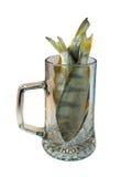 Brema secada para la cerveza Imagenes de archivo