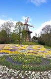 Bremen - windmolen in het park - III - Royalty-vrije Stock Afbeelding