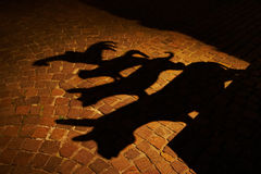 Bremen Town Musicians Shadow. Shadow of the Bremen Town Musicians: ass, dog, cat and cock Royalty Free Stock Image