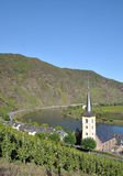 Bremm Mosel flod, germany Arkivbild