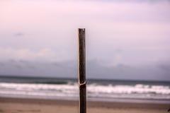 Brench sur la plage se tenant toujours Image libre de droits