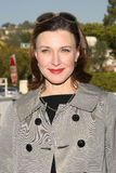 Brenda Strong Royalty Free Stock Photos