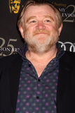 Brendan Gleeson Stock Photos