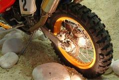 Breng wiel van motorfiets groot stock afbeeldingen
