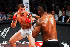 Brennan Ward v. Harley Beekman, MMA Stock Images
