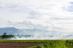 Brennen des brennenden Strohs der Reisstoppel in den Reislandwirten in Thailan Stockbilder