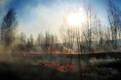 Brennen des Strohs auf dem Feldrauche, Feuer lizenzfreie stockfotografie