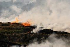 Brennen eines Landwirt-Feldes. Lizenzfreie Stockfotografie