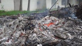 Brennen eines Stück Holzes von einem Baum Gebrannte aber gelassene Asche mit einem lodernden Aufflackern Ursachenrauch Luftversch stock footage
