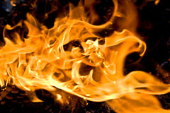 Brennen im Holz Stockfotos
