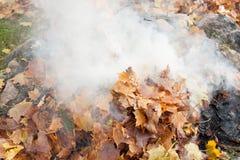 Brennen von alten Blättern Stockfotografie