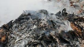 Brennend trocknen Sie Blätter stock video
